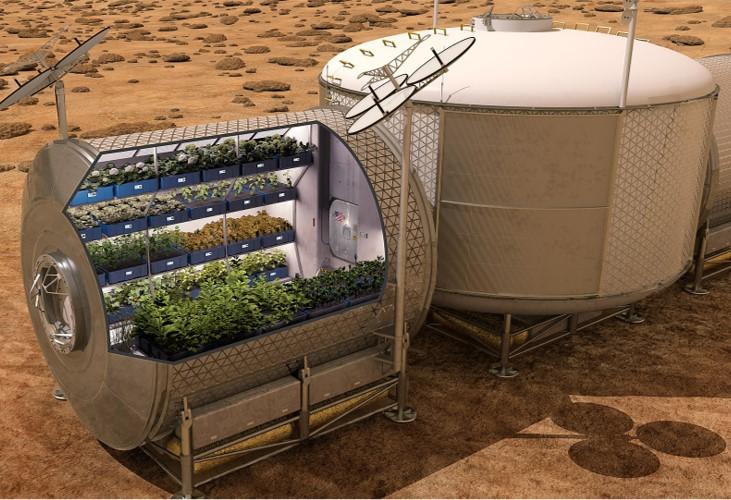 Greenhouse on Mars