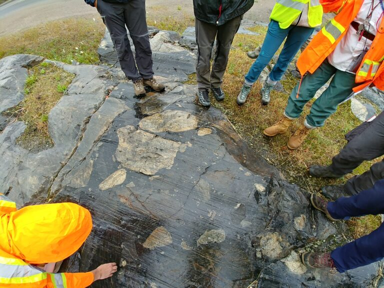 """Sudbury Breccia - Evidence for a large impact: All around the Sudbury structure, the rocks were frac-tured to form fragments of rock surrounded by a dark matrix of pulverized, almost glass-like (""""pseudotachy-litic"""") rock. (photo credit: Kamil Bulcewicz)"""
